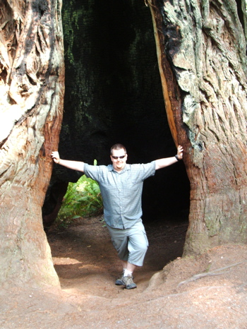 Holding open redwood