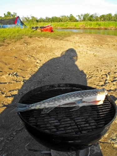 Grilling pike